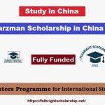Schwarzman Scholarship in China